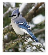 Blue Jay On Hemlock Fleece Blanket