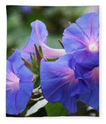 Blue Morning Glory Wildflowers - Convolvulaceae Fleece Blanket