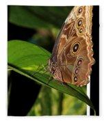 Blue Morpho Butterfly Fleece Blanket