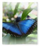 Blue Morpho Butterfly Dsc00575 Fleece Blanket