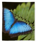 Blue Morpho Butterfly On Fren Dsc00441 Fleece Blanket