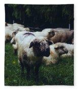 Blue Mountain Sheep Fleece Blanket