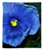 Blue Pansy Fleece Blanket