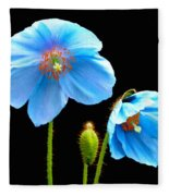Blue Poppy Flowers # 4 Fleece Blanket