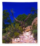 Blue Sky Over The Canyon Fleece Blanket