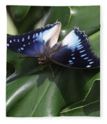 Blue-spotted Charaxes Butterfly #2 Fleece Blanket