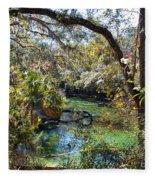 Blue Springs 1 Fleece Blanket