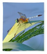 Blue Tail Dragonfly On Navarre Beach Fleece Blanket