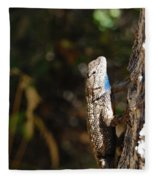 Blue Throated Lizard 2 Fleece Blanket