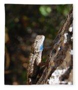 Blue Throated Lizard 4 Fleece Blanket