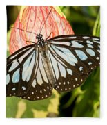Blue Tiger Butterfly Fleece Blanket
