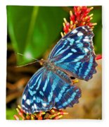 Blue Wave Butterfly Fleece Blanket