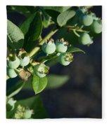Blueberry Branch Fleece Blanket