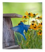 Bluebird Flying Thru Black Eyed Susans Fleece Blanket