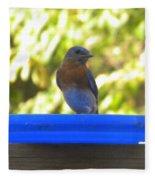 Bluebird Frisbee Fleece Blanket