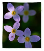 Bluets With Aphid Fleece Blanket