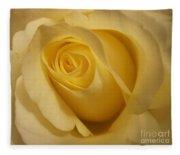 Blushing Cream Rose 3 Fleece Blanket