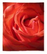 Blushing Orange Rose 1 Fleece Blanket