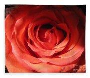 Blushing Orange Rose 3 Fleece Blanket