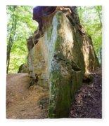 Boat-shaped Rock Wildcat Den State Park Fleece Blanket