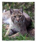 Bobcat 17 Fleece Blanket