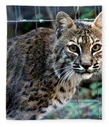Bobcat Beauty Fleece Blanket