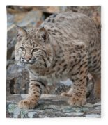 Bobcat On Rock Fleece Blanket