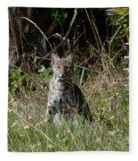 Bobcat On The Prowl Fleece Blanket