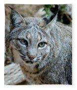 Bobcat's Gaze Fleece Blanket