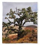 Bobcats Tree Fleece Blanket