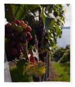 Bodensee Vineyards Fleece Blanket