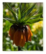Bold And Showy Orange Crown Imperial Flower  Fleece Blanket