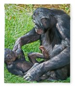 Bonobo Adult Playing With Baby Fleece Blanket