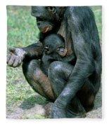 Bonobo Pan Paniscus Nursing Fleece Blanket