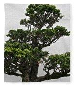 Bonsai Pine Fleece Blanket