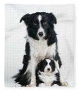 Border Collie Dog & Puppy Fleece Blanket