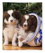 Border Collie Puppies In Plant Pot Fleece Blanket
