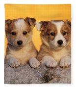 Border Collie Puppies Fleece Blanket