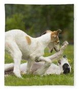 Borzoi Puppies Playing Fleece Blanket