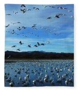 Bosque Del Apache Flight Line Fleece Blanket