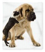 Boston Terrier And Mastiff Fleece Blanket