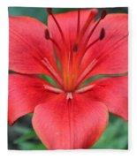 Botanical Beauty 2 Fleece Blanket