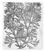 Botany: African Rue, 1597 Fleece Blanket