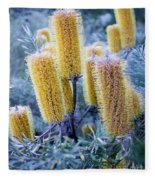 Bottlebrush Fleece Blanket