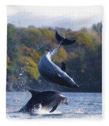 Bottleneck Dolphin Playing Fleece Blanket