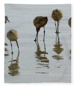Shorebirds 1 Fleece Blanket