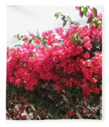 Bougainvillea Fleece Blanket