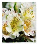 Bouquet Of Alstroemeria Fleece Blanket