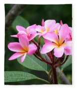 Bouquet Of Pink Plumeria Fleece Blanket