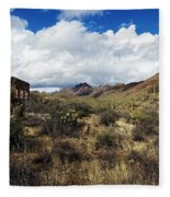 Bowen Homestead Ruins Fleece Blanket